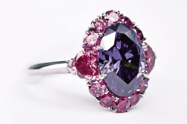 linneys argyle violet